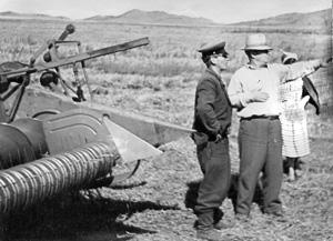 Председатель колхоза «Победа» Дорофей Зайцев с комбайнёром Евгением Князевым. 1960 год.