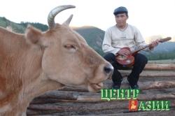 С Шагаа придёт корова и весна