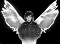 Роскошные белые крылья
