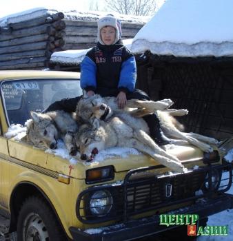 Волчий билет