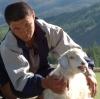 Увеличена компенсация за вынужденно забитый скот, больной бруцеллёзом