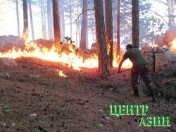 Пожарным-добровольцам – льготы и поощрения