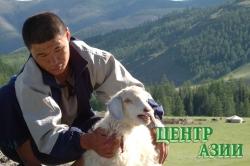 Бай-Тайгинский район признан лучшим, получит 10 миллионов рублей и примет праздник животноводов Наадым-2012