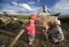Коренные малочисленные народы России: количество тувинцев-тоджинцев уменьшилось значительнее всех