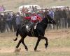 Мальчик, покалечившийся, участвуя в конных скачках, стал причиной для введения штрафов для организаторов соревнований